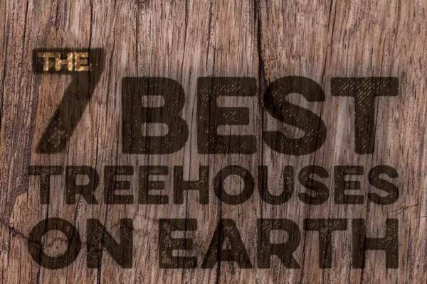 The World's Greatest Treehouses